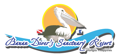 Divers Sanctuary Resort | BDS as featured on Bill Stewart's Underwater Adventures - Divers Sanctuary Resort