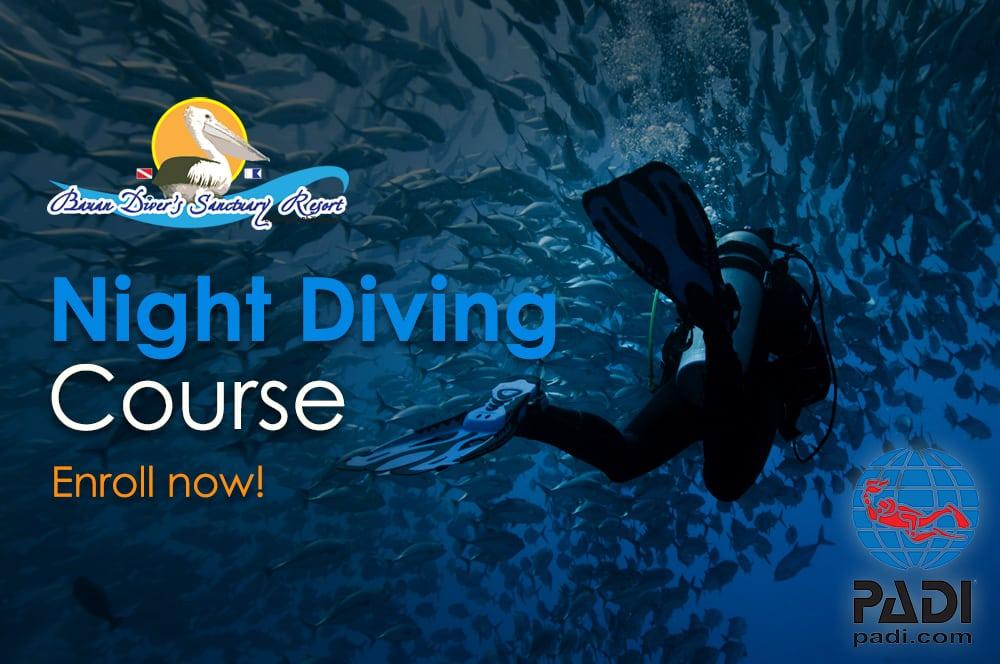 PADI Night Diving Course